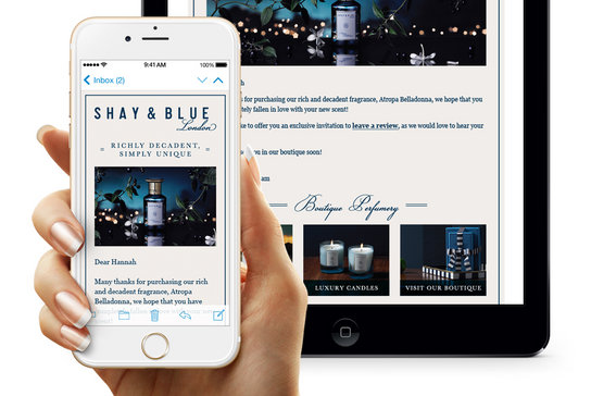 Shay & Blue email design shown on smart phone and tablet